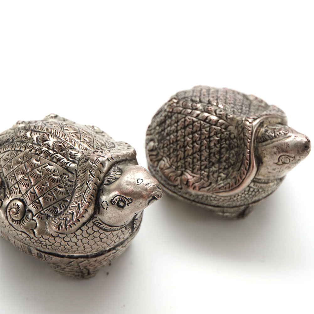 silver turtles