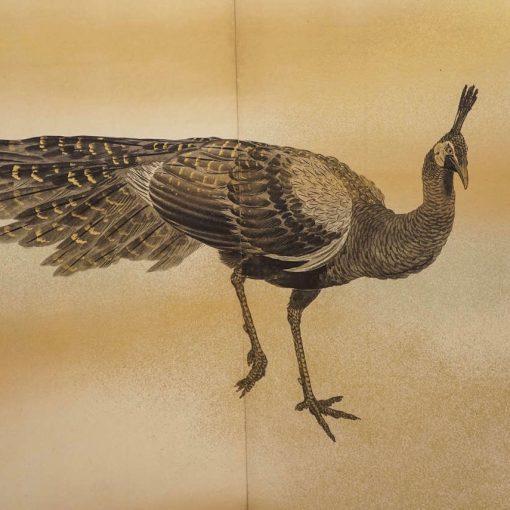 detail fowl