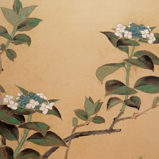 Two_panel_flower_screen1